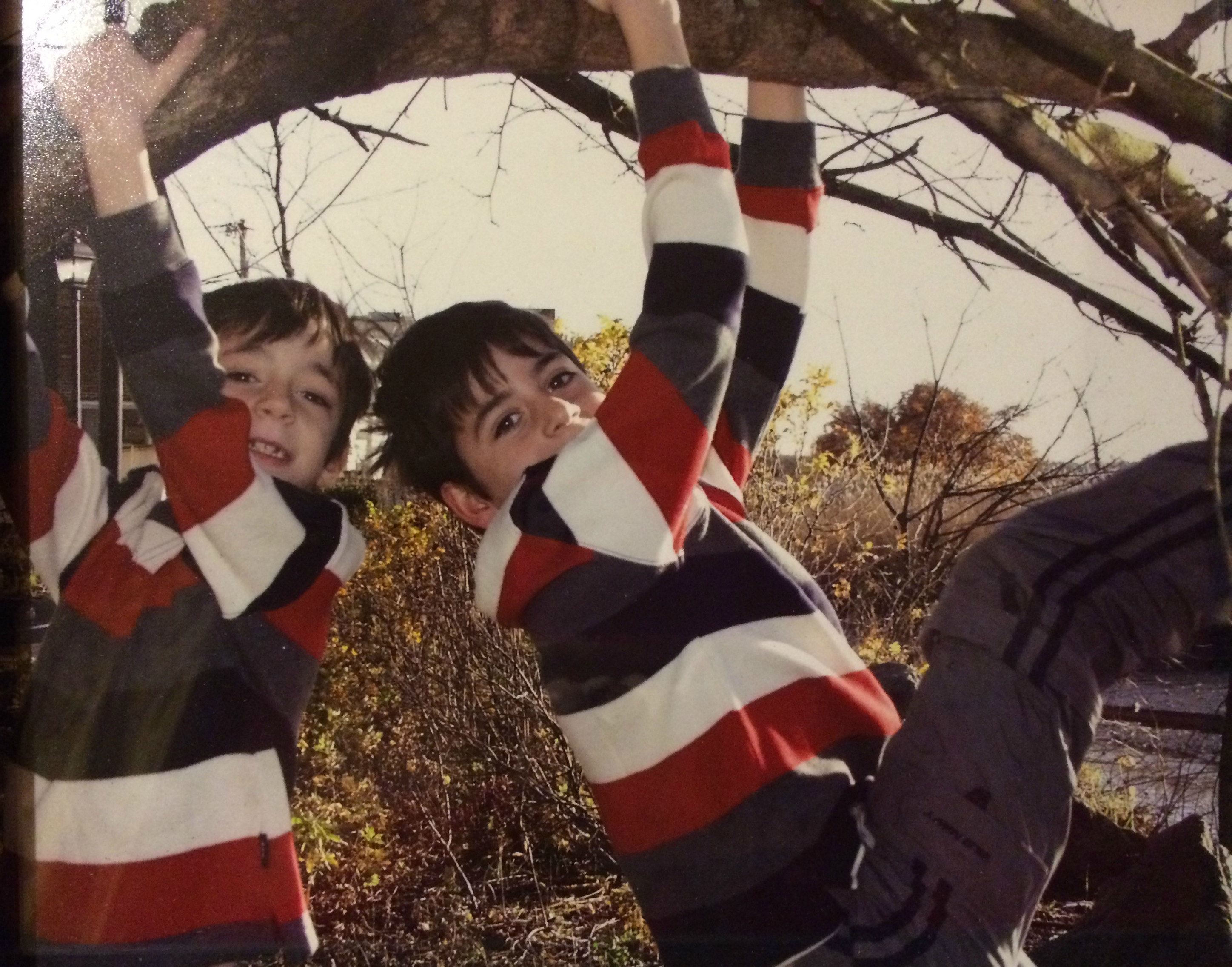 Two little boys smiling as they climb a tree. Fun being a mother of boys